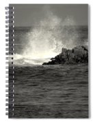 The Wild Pacific In Black And White Two Spiral Notebook