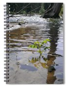 The Wilderness Spiral Notebook