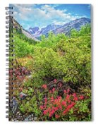 The Wildflowers Of Lundy Canyon Spiral Notebook