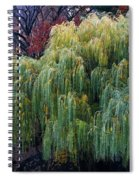 The Willows Of Central Park Spiral Notebook