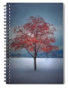 The Winter Berries Spiral Notebook
