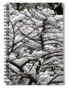 The Winter Has Arrived Spiral Notebook