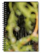 The Winter Hides Beyond The Green Spiral Notebook