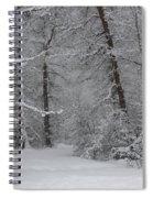 The Winter Path Spiral Notebook