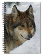 The Wolf 2 Spiral Notebook