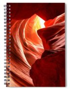 The Woman In The Canyon Spiral Notebook