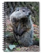 The Woodchuck Has To Pee Spiral Notebook