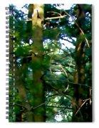 The Woodpecker Spiral Notebook