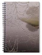 The World Through A Web Spiral Notebook