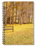 The Yellow Leaves Of Fall Carpet The Ground Of A Ginkgo Biloba Grove. Cm3 Spiral Notebook