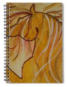 The Yellow  Spiral Notebook