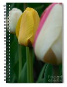 The Yellow Tulip Spiral Notebook