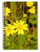 Thee Yellow Smiles  Spiral Notebook