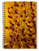 Then Comes The Seed Spiral Notebook