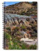 Theodore Roosevelt National Park #1 Spiral Notebook