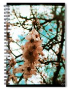 Therapy Spiral Notebook