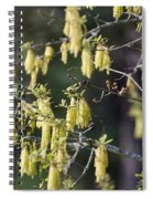 There Back Spiral Notebook