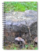 There Is A Fungus Among Us Spiral Notebook