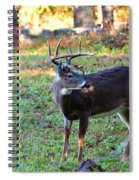 There Is A Twig Stuck In My Antlers Spiral Notebook
