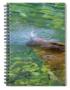 There She Blows Manatee Spiral Notebook
