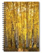 There's Gold In Them Woods  Spiral Notebook