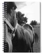 They Always Gotta Smell It Spiral Notebook