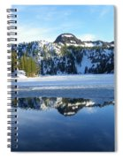 Thin Ice Spiral Notebook