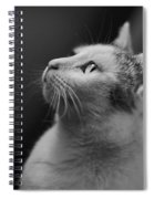 Thinking Of Mouse  Spiral Notebook
