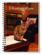 Thinking Of You - Bengal Cat Spiral Notebook