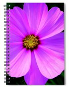 Thinking Of You ... Spiral Notebook