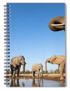 Thirsty Elephants Spiral Notebook
