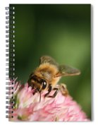 Thirsty For Nectar Spiral Notebook