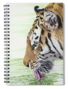 Thirsty Tiger Spiral Notebook