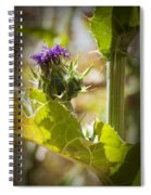 Thistle 2 Spiral Notebook