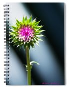 Thistle Bloom Spiral Notebook