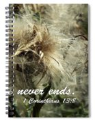 Thistle In Seed Spiral Notebook