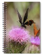 Thistle Pollinators - Large And Small Spiral Notebook
