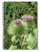 Thistle Trinity Spiral Notebook