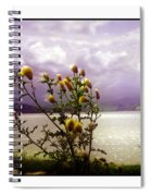 Thistledown Time Spiral Notebook