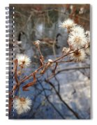 Thistles And Geese  Spiral Notebook