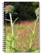 Thistles In A Field Of Clover Spiral Notebook