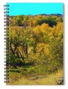 Thompson Valley Overlook Spiral Notebook