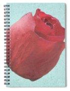 Thornless Spiral Notebook