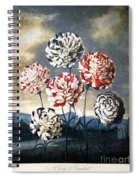 Thornton: Carnations Spiral Notebook