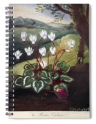 Thornton: Cyclamen Spiral Notebook