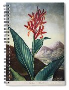 Thornton: Indian Reed Spiral Notebook