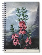Thornton: Kalmia Spiral Notebook