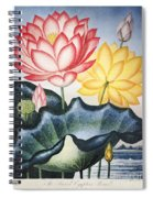 Thornton: Lotus Flower Spiral Notebook