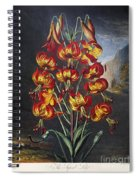 Thornton: Superb Lily Spiral Notebook