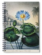 Thornton: Water Lily Spiral Notebook
